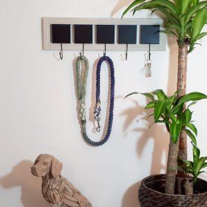 Big Dog Rope Lead - Hydra